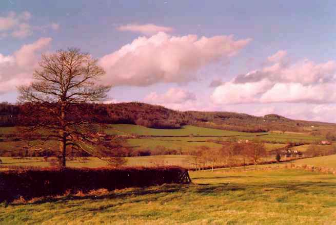The Suckley Hills, as seen from Birchwood Lane in the 1970s